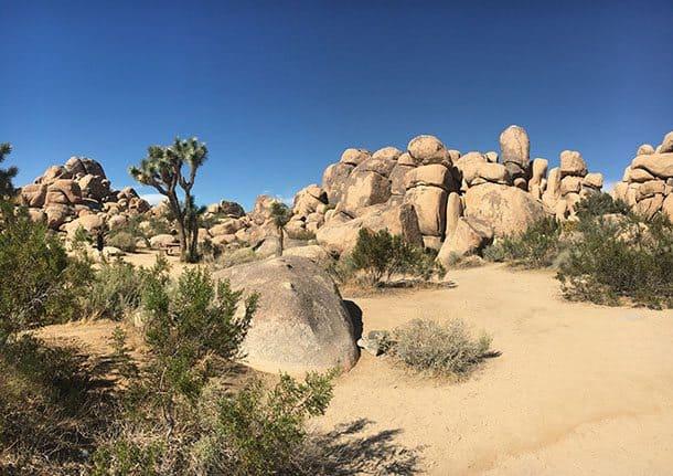 Joshua Tree boulders