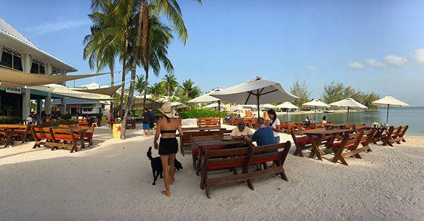 Lunch Cayman Islands