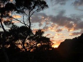 Bay of Islands sun rise