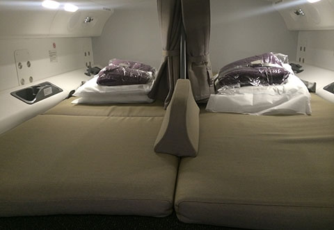 Dreamliner 787-9 pilot rest