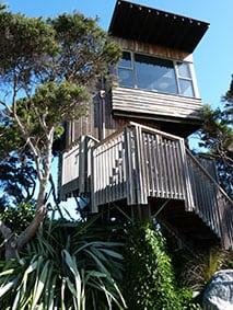 Hapuku tree house