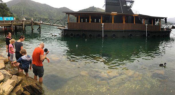 Reef project Lochmara