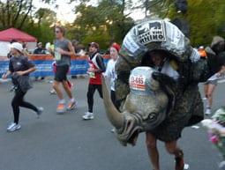 The NY marathon rhino