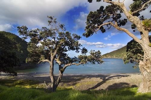 Stoney Bay, Coromandel