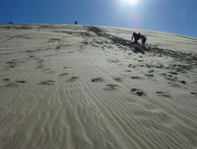 Horizon line and perspective: Ninety Mile Beach, NZ