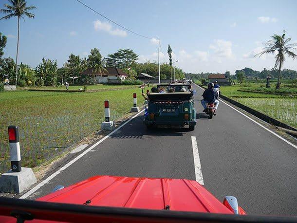 VW drive through rice fields