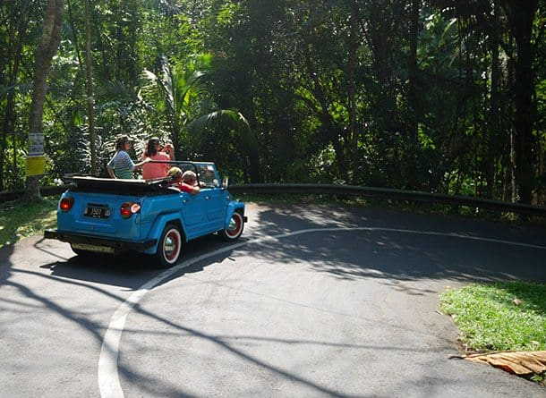 VW safari to ubud