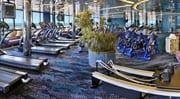 Westerdam gym